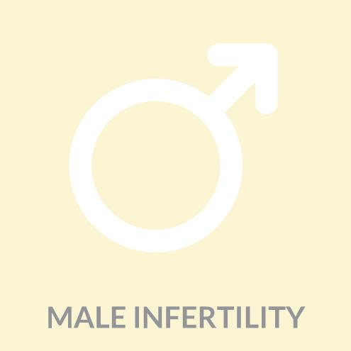 Male Infertility Icon